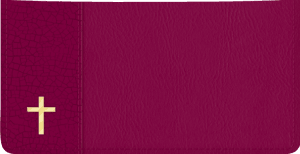 Enlarged view of Believe Checkbook Cover