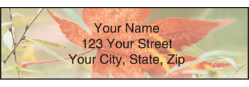 natural inspirations address labels - click to preview