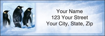 penguin parade address labels - click to preview