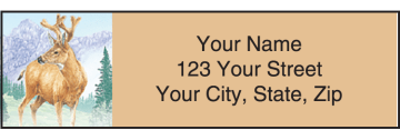 Wildlife Adventure Address Labels – click to view product detail page