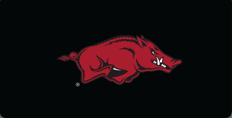 Arkansas Logo Checkbook Covers