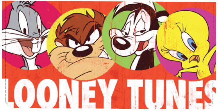 Looney Tunes Checkbook Cover